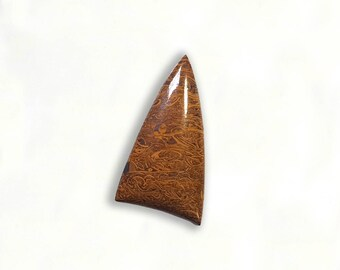 Script Stone Arrowhead/Cabochon/Coquina Jasper/Cabochon/Print Stone/Elephant Skin Jasper/Calligraphy Stone/Mariam Jasper/Cabochons/Natural