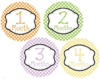 Monthly Baby Stickers Month Stickers Baby Shower Gift Milestone Baby Monthly Stickers