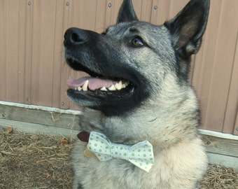 Green Polka Dot Patterned Bow Tie