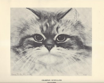 Champion Sunny-Land Char-Miri Print Cats and Kittens Clare Turlay Newberry Vintage