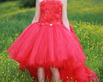 Mayzie costume, Mayzie from seussical the musical, Seussical the musical costume, Feather dress, red dress, Costume