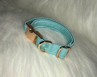 Seafoam Blue Collar, Harness, or Leash