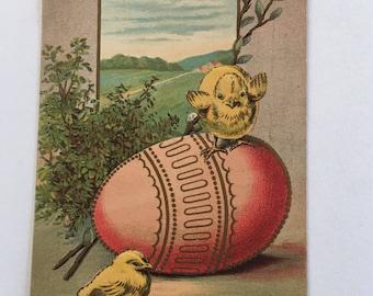 Vintage Easter Chicks an Egg Post Card
