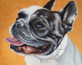 Custom Pet Portrait - painting, dog art, dog portrait, bulldog art, Frenchie