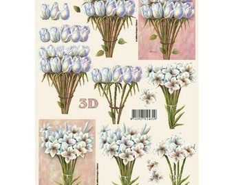 White tulips on stems LS4169764
