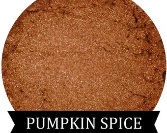 PUMPKIN SPICE Copper Orange Eyeshadow Fall Halloween Collection
