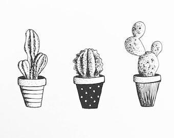 Cacti trio dotwork A4
