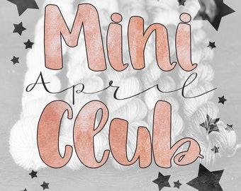 Mini Skein Club - April - Hand Dyed Gradient Mini Set - 5 x 20g 80m Sock Club - Preorder