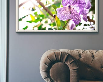 Flowers - Poster
