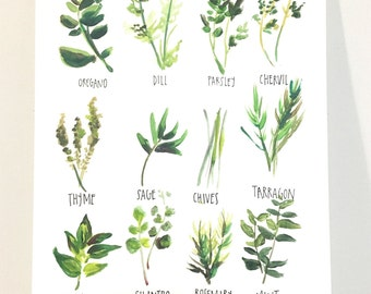 All about Herbs! (print 11x14in)