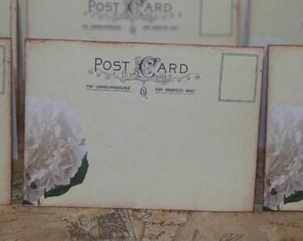 Wedding Place Cards, Vintage Post Cards Placecards, Wedding  Escort Cards, Tent Table Place Cards, White Hydrangea, Quantity 50
