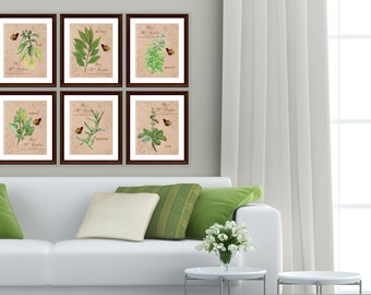 Botanical Art Print Set of 6 Colorful Farmhouse French Country Cottage Style Herbs and Butterflies Wall Art Prints Modern Farmhouse Home Art