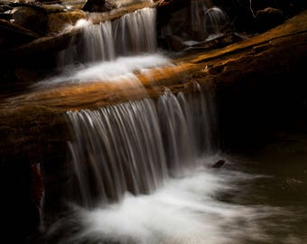 Signed Photograph of a Waterfall Formed from a Fallen Tree Matted for 16x20
