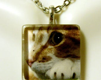 Tabby profile cat pendant and chain - CGP01-064