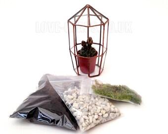 Octagonal Small Geometric Glass Terrarium Kit with Cacti, Soil, Gravel & Moss / Handmade Planter / Indoor Urban Garden for Air Plant