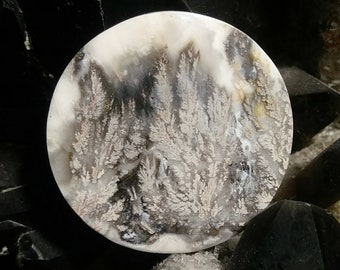 Rare white Plume Agate.  Free shipping