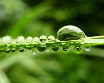 Water droplets greetings card