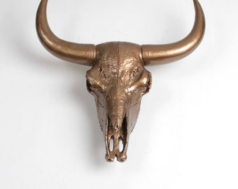 The X-LARGE Suntkin - Extra Large Bronze Resin Buffalo / Bison Skull Head- White Faux Taxidermy- Chic & Trendy Cow Skull :.