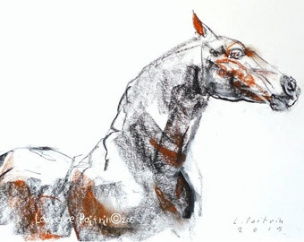 Original Art Horse sketch BLACK STALLION soft pastels and charcoal