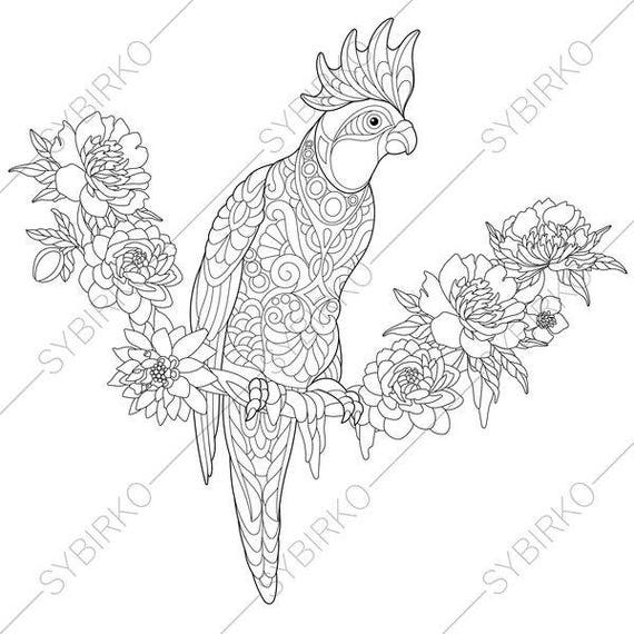 cockatoo parrot coloring page animal coloring book pages for