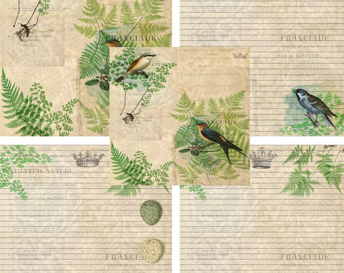 Printable Journal Page, Botanical, Bird, Lined Stationery, JPEG Instant Download, Scrapbooking Paper, Digital Art, Lined Paper, Nature, Nest