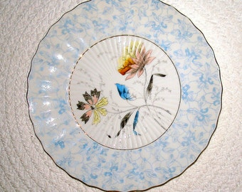 Collectible Hanging Plate Light Blue Vintage Porcelain with Floral Center European French Asian Flair Serving Piece