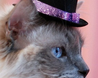 Cat Top Hat -  Valentine's Cat Hat - Mother's Day Hat - Glittering and Bright - Glitz and Glam Hat for Small Pets - Cat Accessory