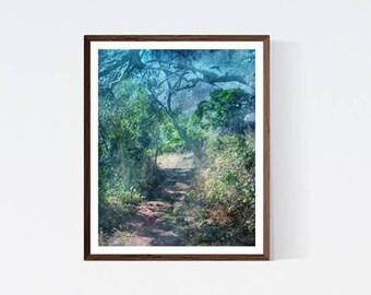 8x10 print, Teal wall art, Teal bedroom decor, Livingroom arts green, PRINTABLE arts teal, Download picture wall art green, Sea green decor
