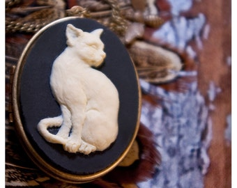 my precious - brass locket with lovely cat cameo - solid perfume or cologne - over 60 natural aroma options