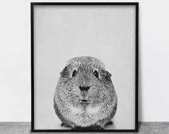 Guinea Pig Print, Nursery Decor, Contemporary Wall Art, Printable Art, Interieur Decor, Animal Print, Black and White, Modern Minimalist