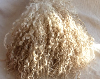 "1 clip Wensleydale  locks 9-10"" gently washed handpicked !"