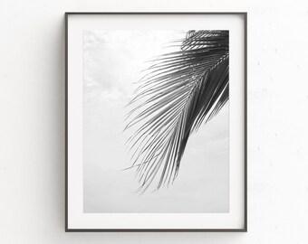 Prints Wall Art, Botanical Prints, Coastal Wall Art, Digital Download Art, Tropical Leaf Print, Bedroom Wall Decor, Palm Leaf Print, Poster