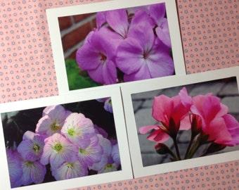 Flower Photo Notecards, Original  Notecards, Blank Notecards, Set of 3 Notecards, Picture Notecards