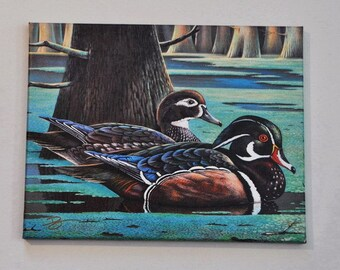 Wood Duck Gallery Wrapped Canvas Print, 11 x 14, Birds, Water, Cypress Trees, Home Decor
