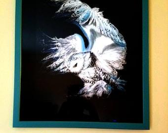 Snowy Owl Hedwig Print