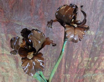 Forged Copper, Oxidized to Milk Chocolate Brown, Double Mounted Bearded Iris