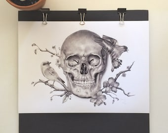 Skull And Birds Fine Art Print