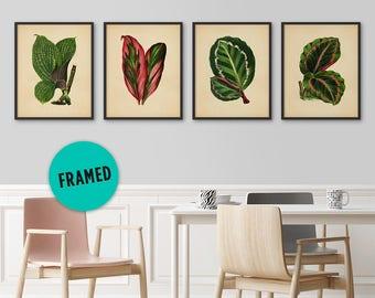 Botanical Print Set, Framed Print Set, Tropical Wall Art, Tropical Decor Print, Tropical Art Decor, Tropical Leaf Art, Tropical Artwork