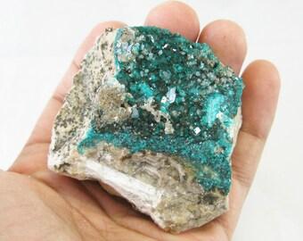 "2.3"" Dioptase Crystals -Kazakhstan 179g Natural green crystal Rock and Mineral Specimen Chakra Healing Reiki N22633"