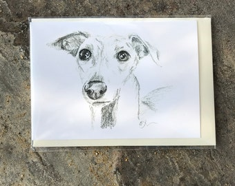 Whippet pencil sketch C6 greetings card