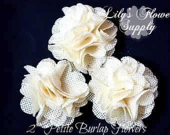 Ivory Petite Burlap Flowers - Burlap Flower - 2 Inches - Fabric Flower - Burlap Rose - Rolled flowers - Wholesale - supply