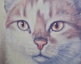 """Cat Portrait Artwork: Vintage 60s Print Reproduction Signed Gira in Fancy Gold Frame 10"""" by 12"""" with Glass"""