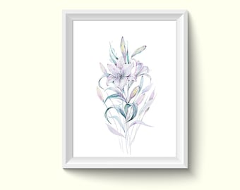 Lily Flower Watercolor Painting Poster Art Print P380