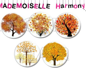 5 glass cabochons autumn tree size 25 mm cabochons