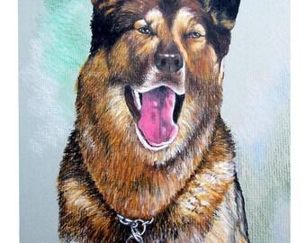 Custom Pet Portrait, Pet Portrait, Colored Pencil, Wall Art, Pet Art