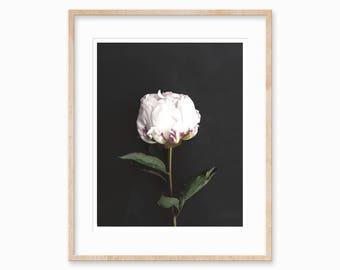 Rose Print • Black and White Rose • Roses Printable Art • Flower Printable • loftodecor • Scandinavian Art • Home Wall Art • Digital Art