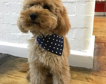 Doggy reversible bandana - polka dot and denim
