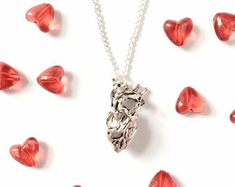 Anatomical Heart Necklace anatomically correct heart ncklace sterling silver Valentines gift science doctor gift real heart gift for him