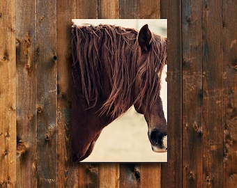 The Red - Horse photography - Animal photography - Horse decor - Horse art - Chestnut horse - Horse art canvas - Red horse art