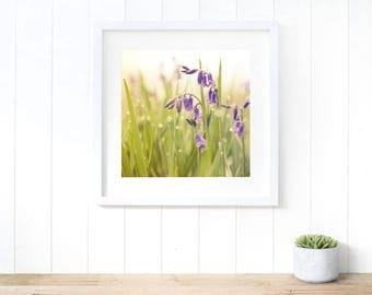 Bluebells wall art Spring fine art photography, bluebells home decor, bluebells print, botanical print, botanical wall art, flower print